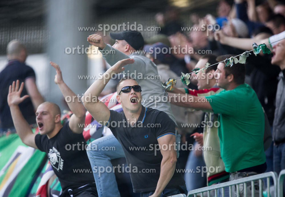Green Dragons, Fans of Olimpija celebrate during football game between NK Olimpija Ljubljana and NK Maribor in 2nd Leg of Semifinal of Slovenian Cup 2013/14, on April 2, 2014 in SRC Stozice, Ljubljana, Slovenia. Photo by Vid Ponikvar / Sportida