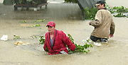 Workers at a nursery near Athens try to save as many plants as possible as a flash flood washes through the business along Highway 72. Photo/Gary Cosby Jr.