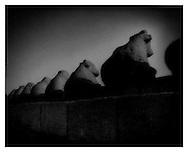 Carved stone bulls guard Mamallapuram's shore temple, Tamil Nadu.