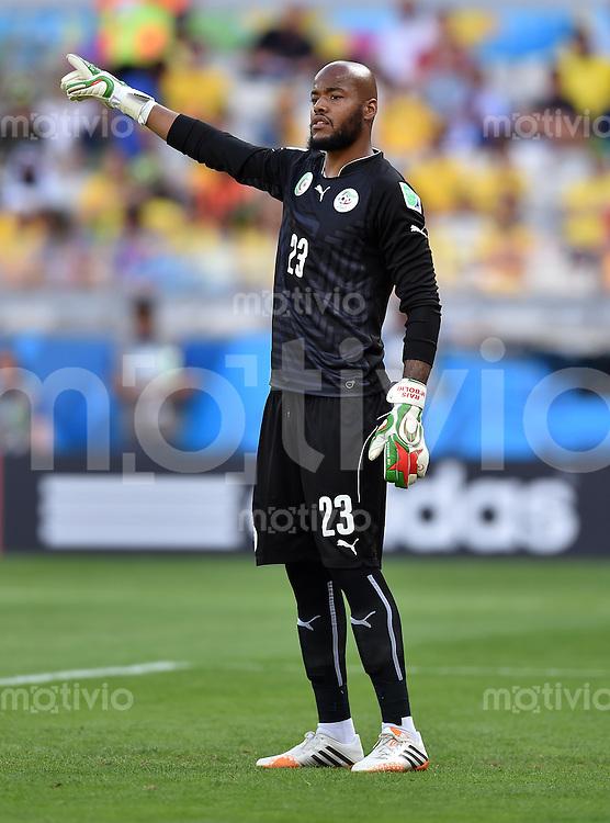FUSSBALL WM 2014  VORRUNDE    Gruppe H     Belgien - Algerien                       17.06.2014 Torwart Rais M Bolhi (Algerien)