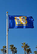 Huntington Beach City Flag