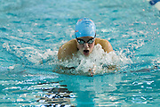 Josephine Panitz swims in the 200 Yard Individual Medley finals of the 2016 NYSPHSAA Swimming and Diving Championships held at Ithaca College on Saturday.
