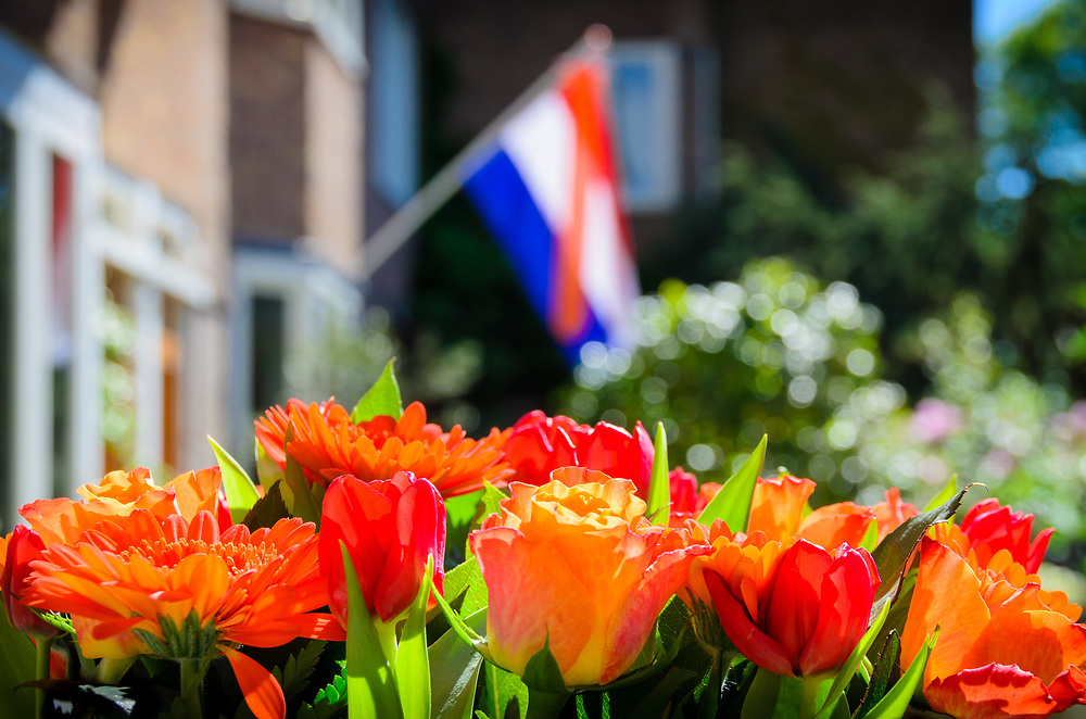 The Dutch flag and orange flowers mark Queen Beatrix's birthday on April 30, 2012.