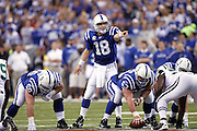 INDIANAPOLIS, IN - JANUARY 24: Quarterback Peyton Manning #18 of the Indianapolis Colts calls a play at the line of scrimmage during the AFC Championship game against the New York Jets at Lucas Oil Stadium on January 24, 2010 in Indianapolis, Indiana. The Colts defeated the Jets 30-17. (Photo by Joe Robbins) *** Local Caption *** Peyton Manning