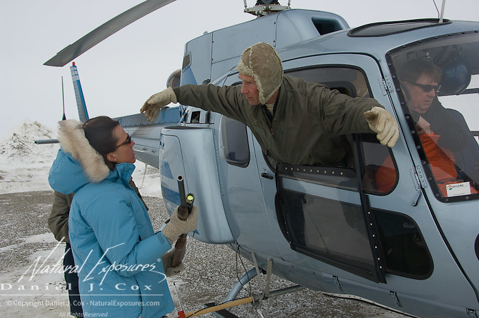 Dr. Steve Amstrup shows assitants how to shoot a dart gun from the window of the capture helicopter. Kaktovik, Alaska.