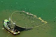 Devastación Pesca industrial