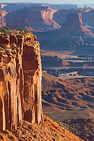 Green River Overlook at dawn, Canyonlands National Park Utah