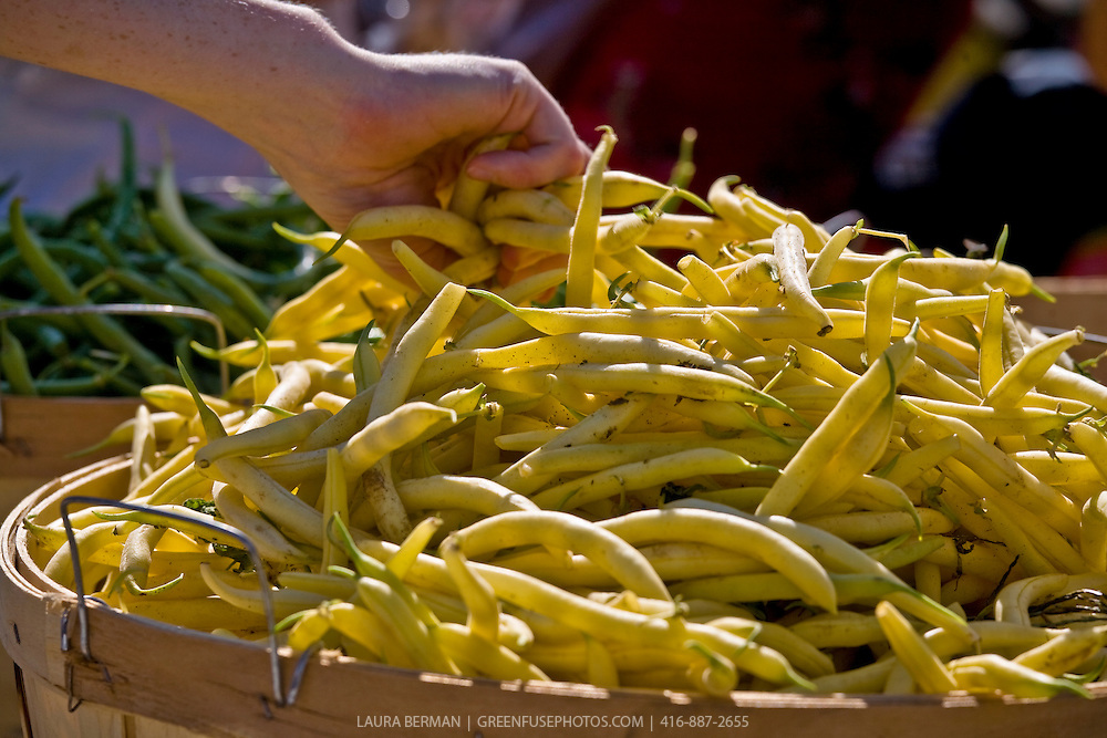Yellow beans at a farmers market.