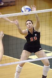 27 October 2006: Ellen Bruegge makes a set as the ball comes to her at a very strange angle. The Bears won the match 3 games to 1. &#xD;The match between the Washington University Bears and the Illinois Wesleyan Titans took place at Shirk Center on the IWU campus in Bloomington Illinois.<br />