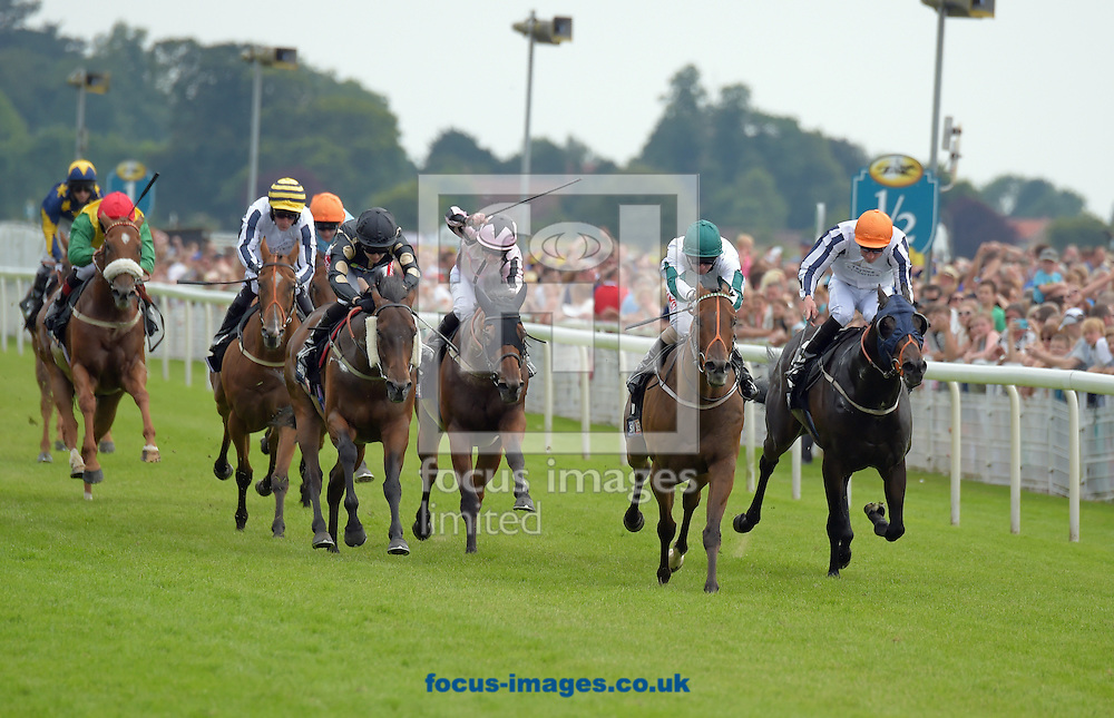 Kimberella ridden by Franny Norton (white with green diablo on sleeves and cap) wins Sky Bet dash  during the Sky Bet York Stakes meeting at York Racecourse, Yorkshire, UK.<br /> Picture by Martin Lynch/Focus Images Ltd 07501333150<br /> 23/07/2016