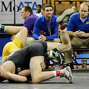 Kris Wilson/News Tribune<br /> Versailles' Adam Guinn, black singlet, rolls Lafayette County's Hunter Goring onto his shoulders to record the win by fall in front of a pair of dejected Husker coaches in their Class 1 160-pound opening round match during the 2016 MSHSAA Wrestling State Championships at Mizzou Arena in Columbia.