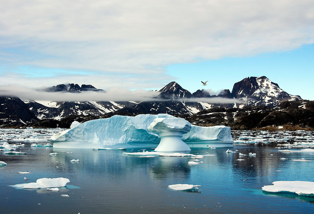 A landscape from Greenland which features a mushroom shaped iceberg with a seagull flying over it.