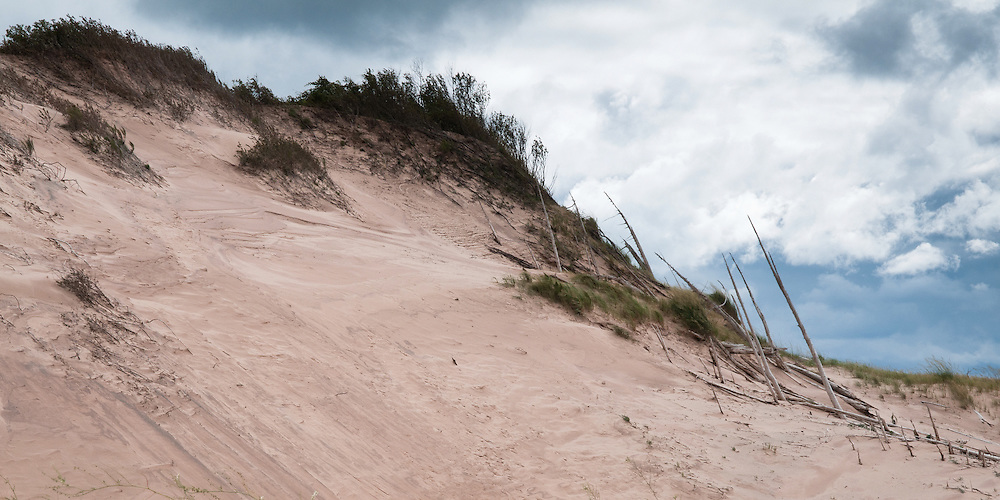 A stand of dead trees surrounded by sand.  The trees in these ghost forests were killed hundreds of years ago by the moving dunes.<br /> <br /> Sleeping Bear Dunes National Lakeshore, Michigan