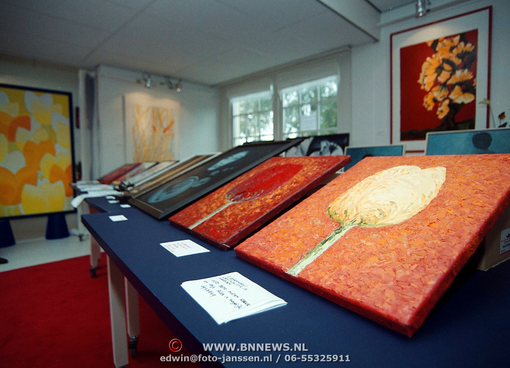 Alternatieve kunstroute Oranje Weeshuisstraat Huizen