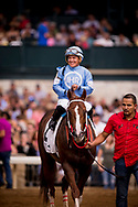 LEXINGTON, KY - OCTOBER 07: Bucchero #2, ridden by Fernando De La Cruz enters the winners circle after the Woodford Presented by Keeneland Select Stakes at Keeneland Race Course on October 07, 2017 in Lexington, Kentucky. (Photo by Alex Evers/Eclipse Sportswire/Getty Images)