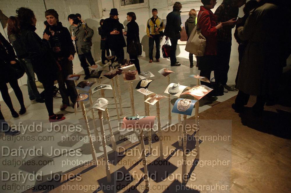 Gabriele Beveridge'S WORK. Opening of Statues Die Too.- Group exhibtion of Gabriele Beveridge, Niamh Riordan, Lise Hoveson, Rose O'Gallivan, Poppy Jones. The Garage. North Terrace, South Kensington. London. 16 November 2009.