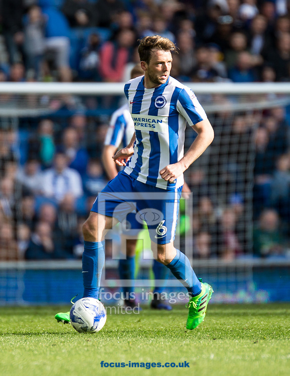 Dale Stephens of Brighton &amp; Hove Albion during the Sky Bet Championship match at the American Express Community Stadium, Brighton and Hove<br /> Picture by Liam McAvoy/Focus Images Ltd 07413 543156<br /> 01/04/2017