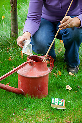 Mixing Nemasys Grow Your Own  nematodes in a watering can ready to water onto apple tree trunk as a pest control