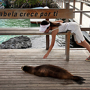 "A young Japanese tourist reaches out to - but doesn't touch - a young sea lion on Isabela Isaland in Puerto Villamil, Galapagos on 6/21/09. The slogan on the bench, ""Isabela crece por ti,"" translates in English to ""Isabela, growing for you.""  The islands of Galapagos are under a constant battle for balance between it's nature and it's human inhabitants and visitors."