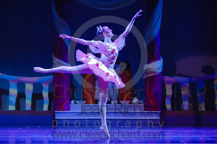 "Dancers of the Woodlands Ballet Ensemble and students of the Payne Academy of the Performing Arts onstage in the final dress rehearsal for ""The Nutcracker""...Performances November 23rd to 25th, 2012 at Woodlands College Park HS Theatre, The Woodlands, Texas...http://www.payneacademy.com"