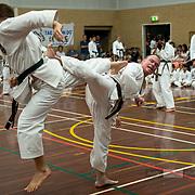 FIRST TKD: March 2020 Black Belt exam