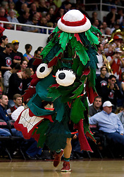 February 27, 2010; Stanford, CA, USA;  The Stanford Cardinal mascot performs during the first half against the Arizona Wildcats at Maples Pavilion. Arizona defeated Stanford 71-69.