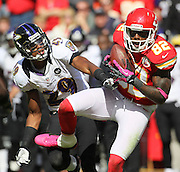 of an NFL football game, Sunday, Oct. 7, 2012, in Kansas City, MO. (AP Photo/Colin E Braley)