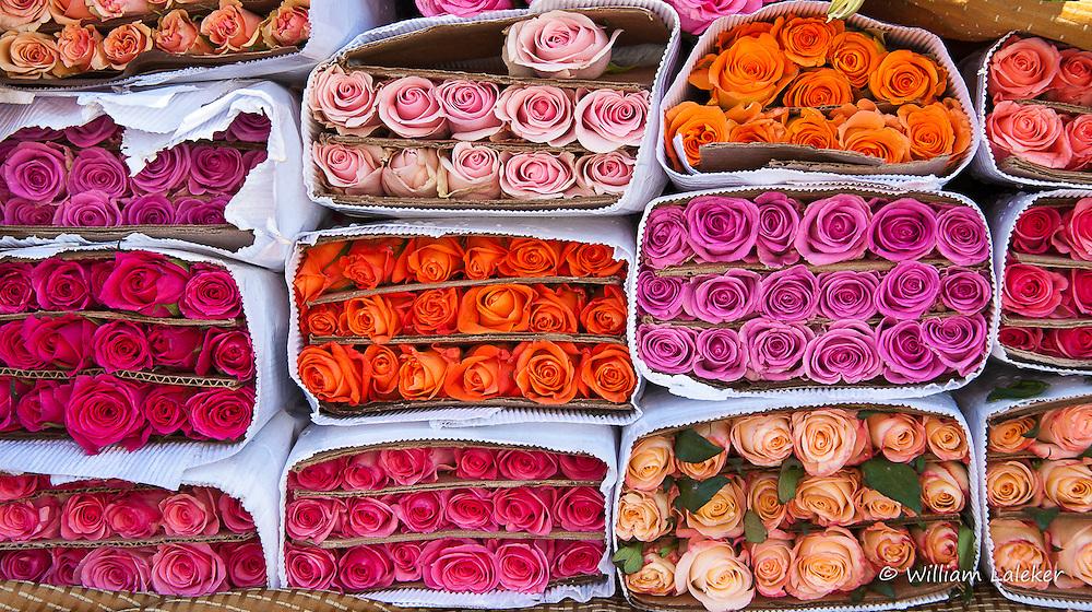Fresh cut flowers at street market in San Miguel de Allende