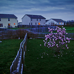 Spring evening at dusk in Pataskala, Ohio April 7th 2010. (Christina Paolucci, photographer).