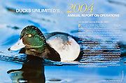 Ducks Unlimited Annual Report, 2004