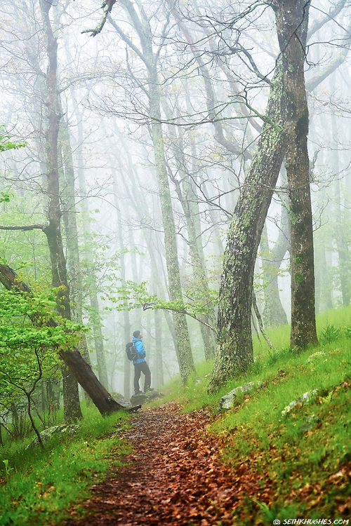 A man hiking through a foggy atmosphere on the Appalachian Trail in Shenandoah National Park, Virginia.