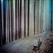 bench in a forest - abstraction