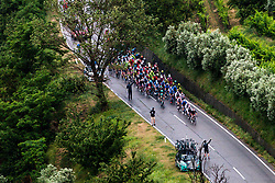 Peloton at Smartno in Goriska Brda during 4th Stage of 26th Tour of Slovenia 2019 cycling race between Nova Gorica and Ajdovscina (153,9 km), on June 22, 2019 in Slovenia. Photo by Matic Klansek Velej / Sportida