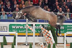 55-NN<br /> KWPN Hengstenkeuring - 's Hertogenbosch 2005<br /> Photo © Hippo Foto