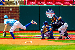 25 May 2019:  Zach Frey pitches, Max Wright catches, Luke Bandy bats and Bill McGuire makes the calls. Missouri Valley Conference Baseball Tournament - Dallas Baptist Patriots v Indiana State Sycamores at Duffy Bass Field in Normal IL<br /> <br /> #MVCSPORTS