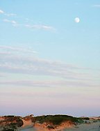 A moonrise over the Outer Banks, with a wild horse.