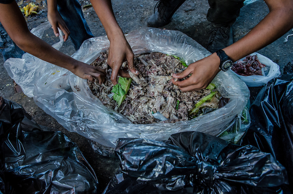 CARACAS, VENEZUELA - FEBRUARY 10, 2017: Families salvage food scraps from garbage bags in downtown Caracas. The 2016 ENCOVI (Survey on Living Conditions in Venezuela) found that a skyrocketing percentage of Venezuelan families are struggling to acquire enough food to eat.  Over 90% of the over 6,000 families surveyed reported not having enough income to buy all the food they need. A shocking 73% of survey respondents reported involuntarily weight loss, an average of 8.7kg each for those that said they involuntarily lost weight.  Food and medicine shortages, skyrocketing inflation and the collapse of social programs are causing working class families that once supported the government and Hugo Chávez's socialist revolution to increasingly become disillusioned with the government, and its commitment to the poor. Many once die-hard Chavistas say they feel abandoned, and no longer support the government. PHOTO: Meridith Kohut