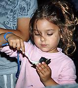 Israel, Jordan Valley, Kibbutz Ashdot Yaacov, Lag Ba'Omer celebration with a bonfire. Child eating a baked potato from the fire