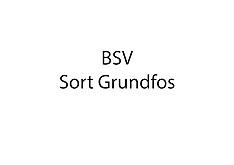 20160901 BSV håndbold - spillerfoto - sort Grundfos dragt