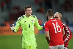 LILLE, FRANCE - Friday, July 1, 2016: Wales goalkeeper Wayne Hennessey celebrates the 3-1 victory over Belgium with Joe Ledley and Jonathan Williams at full time after the UEFA Euro 2016 Championship Quarter-Final match at the Stade Pierre Mauroy. (Pic by Paul Greenwood/Propaganda)