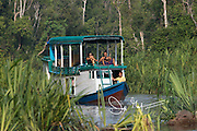 Tourists ride a Klotok river boat up the Sekyonyer river in Tanjung Puting National Park, Indonesia.