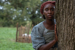RELEASE DATE: 2019 TITLE: Harriet STUDIO: Focus Features DIRECTOR: Kasi Lemmons PLOT: Based on the story of iconic freedom fighter Harriet Tubman, her escape from slavery and subsequent missions to free dozens of slaves through the Underground Railroad in the face of growing pre-Civil War adversity. STARRING: CYNTHIA ERIVO as Harriet Tubman. (Credit Image: © Focus Features/Entertainment Pictures/ZUMAPRESS.com)