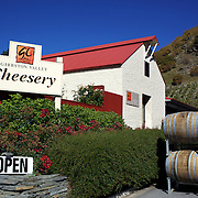 The Gibbston Valley Cheesery is located in Queenstown's Valley of Vines, high in the southern mountains, Gibbston Valley Cheese specialises in sheep, cow and goat milk cheeses hand-crafted in the European style..The premises features a café, retail shop, cheese-making presentation and complimentary tastings of the Gibbston Valley Cheese range..23 March  2011.  Photo Tim Clayton..