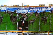"""Roma 20 Febbraio 2013 .Manifesti raffigurante un caprone in giacca e cravatta con la scritta """"la politica non è un pascolo"""", per una politica pulita e onesta."""
