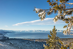 """Icicles Above Lake Tahoe 2"" - Stitched panoramic photograph of icicles hanging from a tree above a snowy and blue Lake Tahoe."