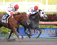 Apriority ridden by Luis Saez edges out Zero Rate Policy with Paco Lopez aboard to win the Mr. Prospector stakes at Gulfstream Park on 12/31/11