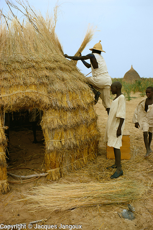 Kanembu men making a thatch hut in Kanem, Chad, Africa.