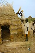 Kanembu men making a thatch hut in Kanem, Chad, Africa.