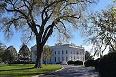 White House Christmas,  Garden, Building, Gallery