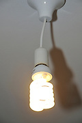 lit light lamp using an efficient Compact fluorescent lamp